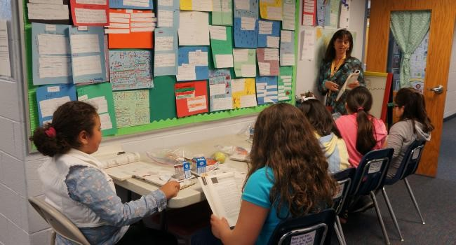 Lärarens roll